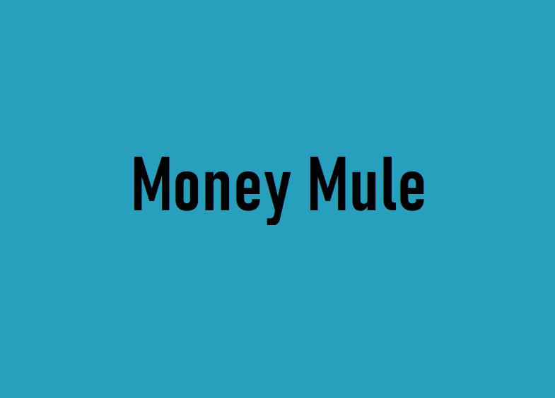 money_mule1
